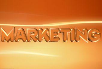 Рефераты по управлению маркетингом